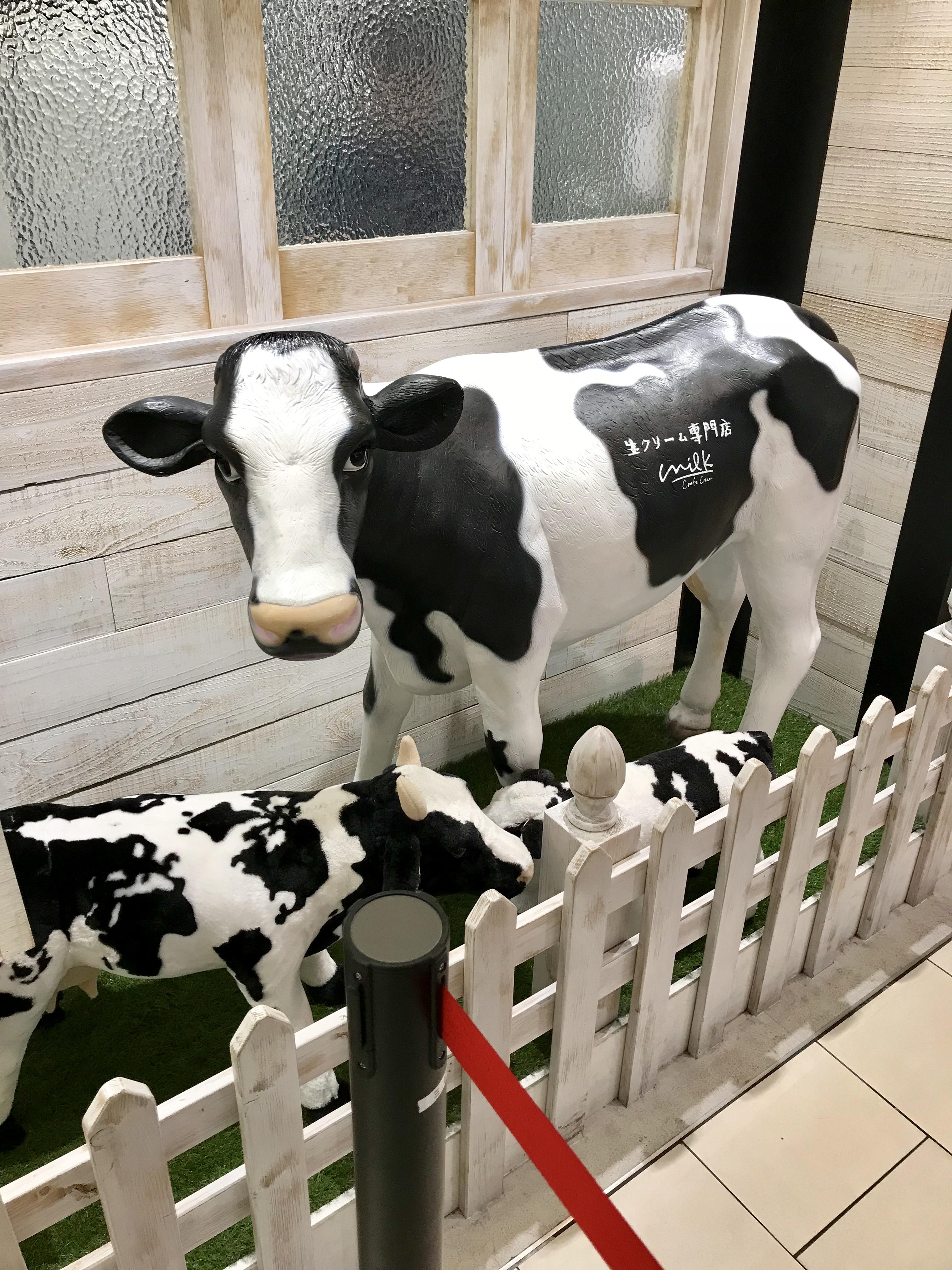 milk-gaikan2