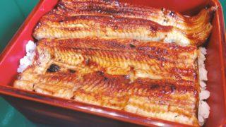hirokawa-unajuu1